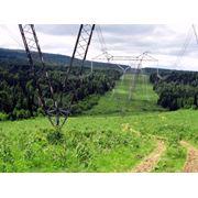 Уничтожение нежелательной растительности химическим способом фото