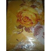 Роза жёлтая фото