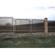 Забор из полигаля (поликарбоната) Алматы фото
