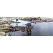 Рекультивация нефтезагрязненных земель фото