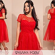 Платье женское миди беби долл АК/-17271 - Красный фото