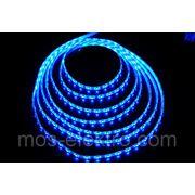 LSW 3528 12V 60led/m B (синяя) 5m 24W фото