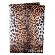 Обложка для паспорта из кожзама Леопард фото