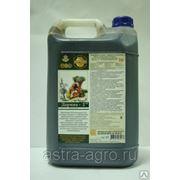 Удобрение «Дарина-4»-для подсолнечника, хлопчатника, кукурузы, риса 5 л фото