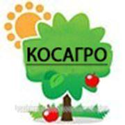 Продажа Суперфосфата, удобрения Алматы http://kosagro.tov.kz/ фото