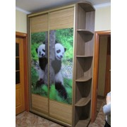 Изготовление корпусной мебели под заказ. фото