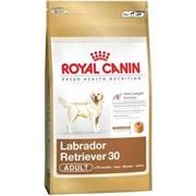 Корм для собак Royal Canin Labrador (для лабрадор-ретриверов) 12 кг фото