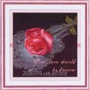 "Набор для рисования камнями ""С любовью"" 1443 фото"