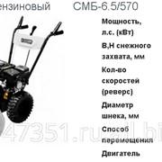 Самоходная снегоуборочная машина 5,5 Л.С. со скидкой фото