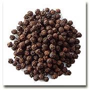 Перец чёрный горошек фото