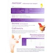 Кормовой пробиотик Лавипан фото