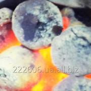 Угольный Брикет , Антрацит фото