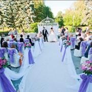 Свадебный регистратор,оформление регистрации фото