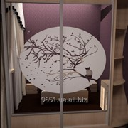 Зеркало для шкафов купе 00-93 фото