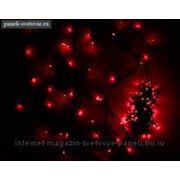 """Гирлянда """"Твинкл"""", черная нить 20 м, LED-(R), 200 лампочек, 240V, с контроллером, 8 режимов, красная фото"""