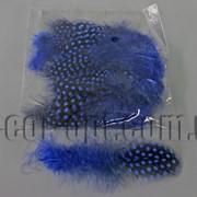 Перья синие с горохом 5-10 см ~50 шт 570400 фото