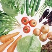 Органические овощи продажа фото