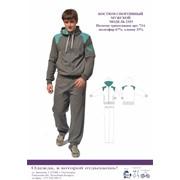 Костюм спортивные мужской модель 2353 фото