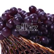 Винограды фото