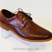 Коричневые мужские туфли Tapi 5154 фото