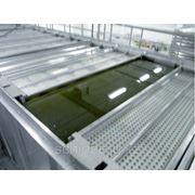 Солильный бассейн для сыров INMERSAL для контейнеров фото