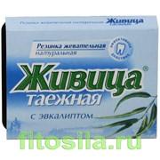 Резинка Живица таежная с эвкалиптом №5х0,8 г фото