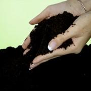 Бактериальные удобрения в Шымкенте фото