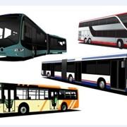 Транспортное обслуживание автобусами фото
