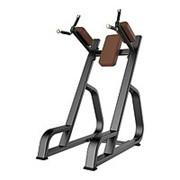 Профессиональный тренажер для зала пресс / брусья DHZ Fitness E1047 фото