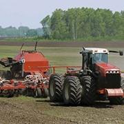 Агрохимические консультации. Агрономический надзор над полями. фото