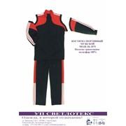 Костюм спортивные мужской модель 2075 фото