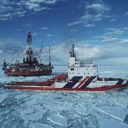 Оценка перспектив нефтегазоносности Арктического шельфа фото