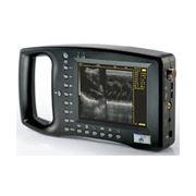 Сканер - УЗИ ( ветеринарный ) фото