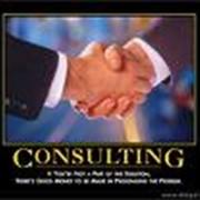 Консалтинг в области внедрения бизнес-приложений фото