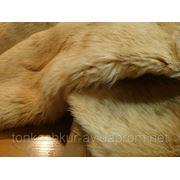 Мех одёжный бежевый камышовый кот фото