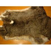 9381 Мех натуральный кролик некрашеный серый фото