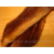 Мех натуральный норка самец GOLD фото