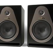 Активные студийные мониторы Samson Resolv A8 (пара) фото