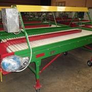 Стол сортировочный переборочный для картофеля и овощей (инспекционный роликовый) фото