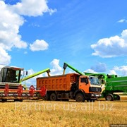 Грузоперевозки зерновых культур фото