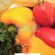 Сельскохозяйственный продукт фото