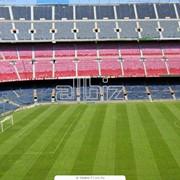 Билеты на футбольные матчи фото