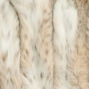 Мех канадской рыси фото