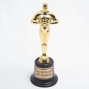 Статуэтка Оскар с надписью Золотой человек 22 см фото