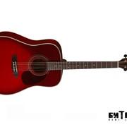 Акустическая гитара Cort Earth70 (TWB) фото