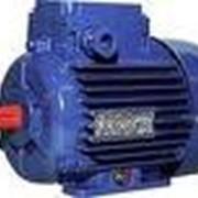 Трехфазные асинхронные двигатели АИР56 фото