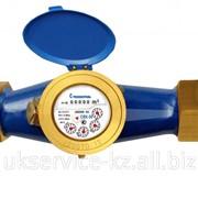 Счетчик для воды СВХ-50И Импульсный фото