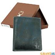 Бумажник Betta Wild черный друид фото