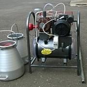 Доильный аппарат АДС-3 для 10 коров фото