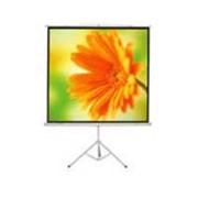 Проекционный экран ScreenMedia SM-TR114X153-MW фото